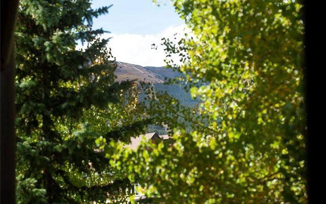 Corral At Breckenridge 201w - photo 18