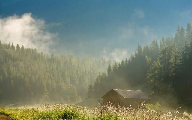 114 Bergen Trail - photo 11