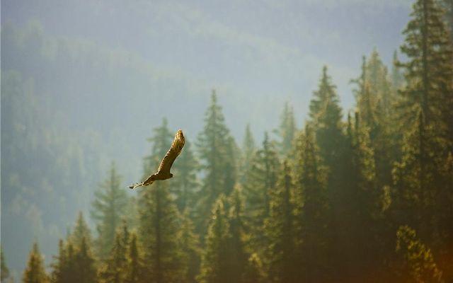 114 Bergen Trail - photo 2