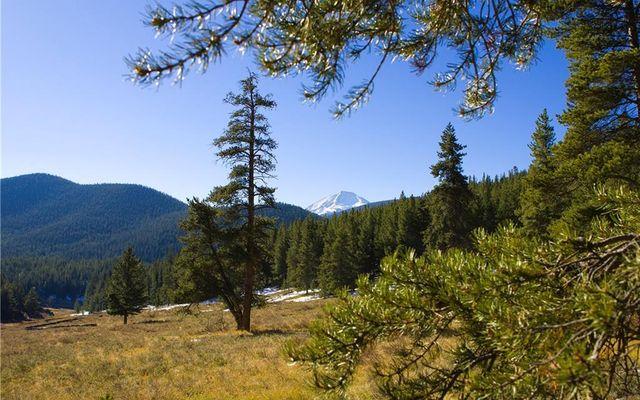114 Bergen Trail - photo 6
