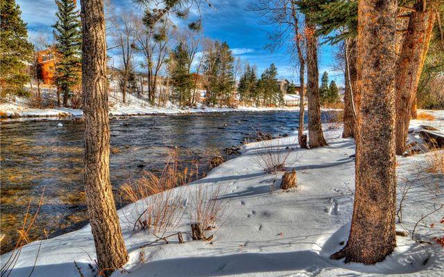 River West Condos 514 - photo 3