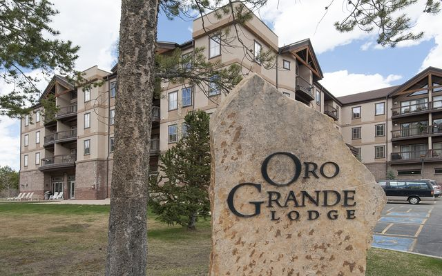 Oro Grande Lodge 312 - photo 21