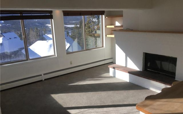 Tyrollean Terrace Condo 4c - photo 1