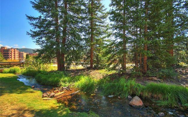 Cedars At Breckenridge Townhomes 23 - photo 18