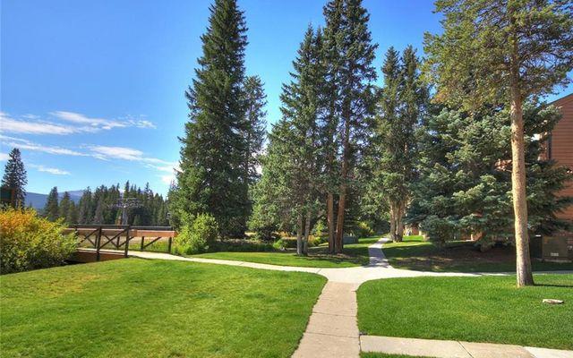 Cedars At Breckenridge Townhomes 23 - photo 28