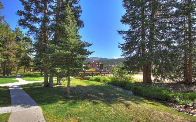 Cedars At Breckenridge Townhomes 23 - photo 29