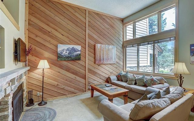 Cedars At Breckenridge Townhomes 23 - photo 4