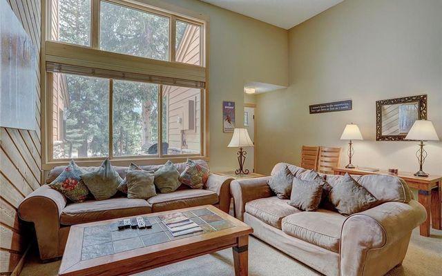 Cedars At Breckenridge Townhomes 23 - photo 7