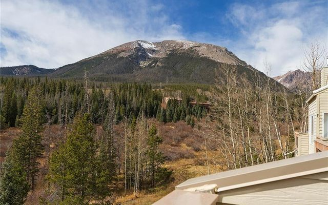 95200 Ryan Gulch Road #223 SILVERTHORNE, CO 80498
