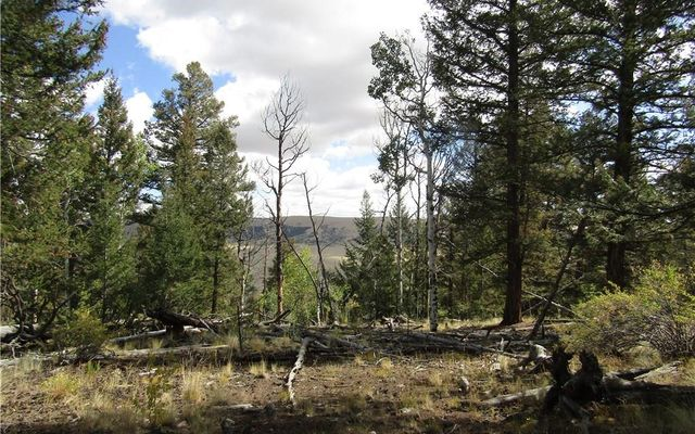 3067 Middle Fork - photo 24