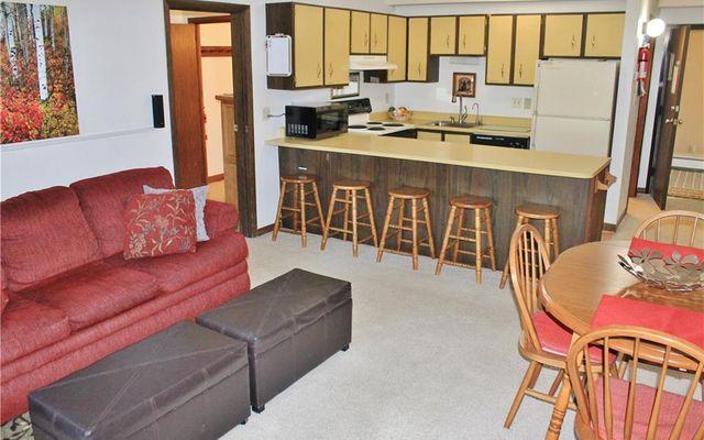 Lodge At Lake Dillon Condo 230,232,234 - photo 18