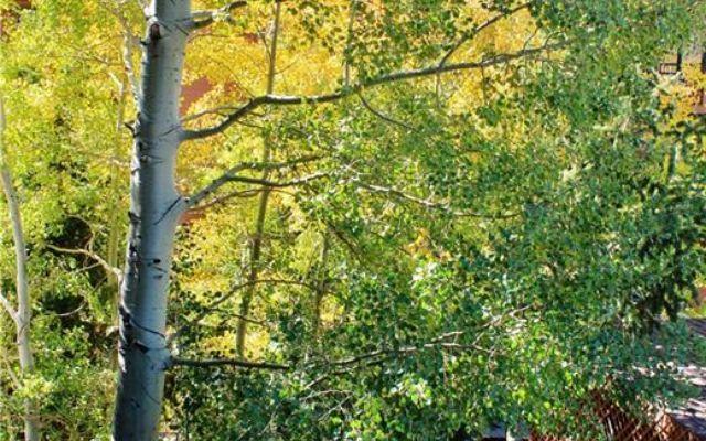 Lodge At Lake Dillon Condo 230,232,234 - photo 24