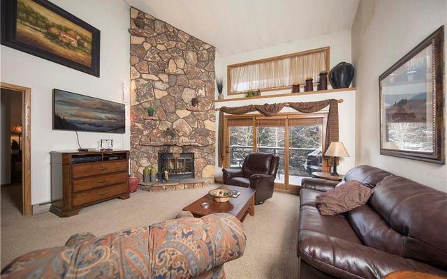 Snowdance Manor Condo 406 - photo 1