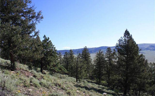 4476 MIDDLE FORK VISTA FAIRPLAY, CO 80440