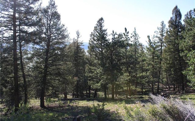 4476 Middle Fork Vista - photo 4