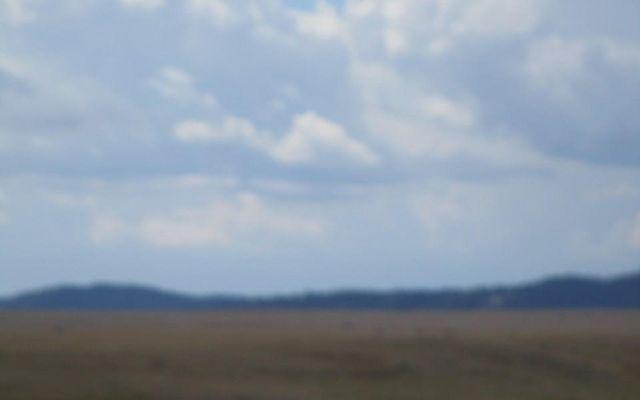 0000 South Park Meadows - photo 10