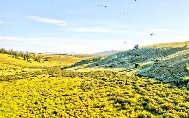 791 Apache Trail - photo 10
