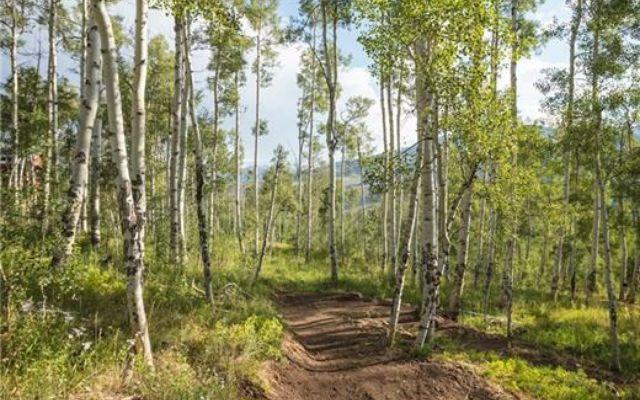 208 Maryland Creek Trail - photo 17