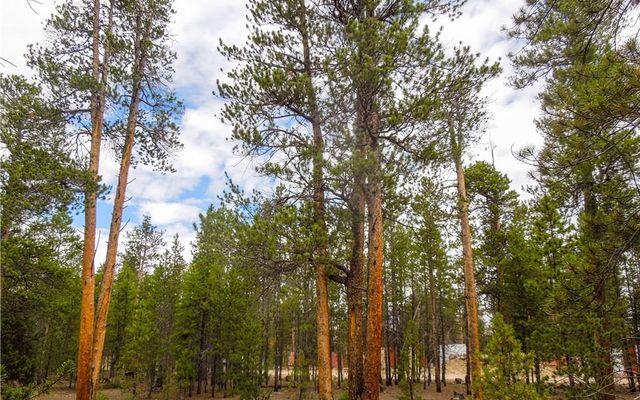 360 Spruce Drive - photo 3