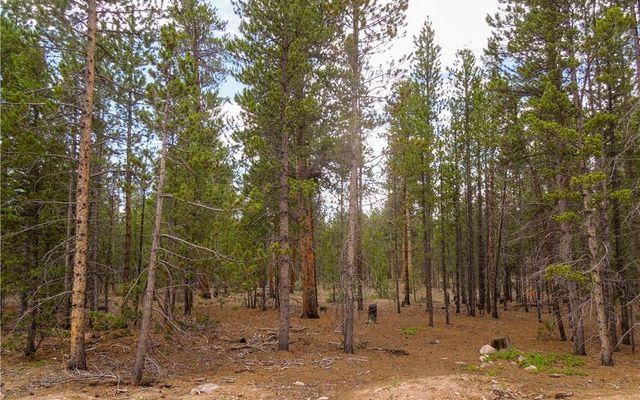 360 Spruce Drive - photo 5