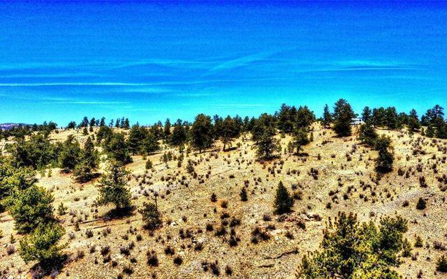 529 Goldenburg Canyon Road - photo 10