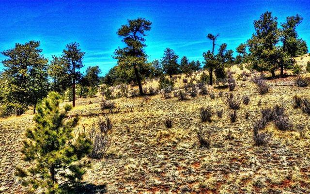 529 Goldenburg Canyon Road - photo 13