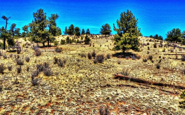529 Goldenburg Canyon Road - photo 14