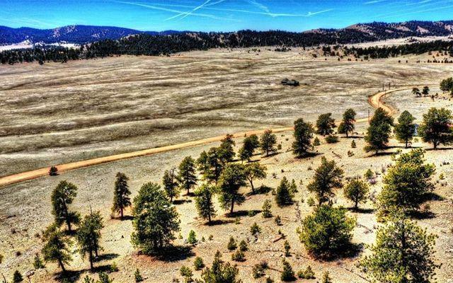 529 Goldenburg Canyon Road - photo 23