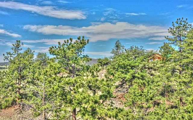 812 Arapahoe Trail - photo 8