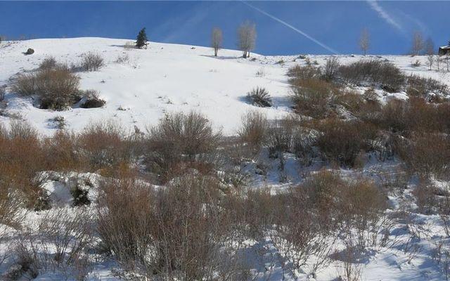 223 Hillside Drive - photo 5