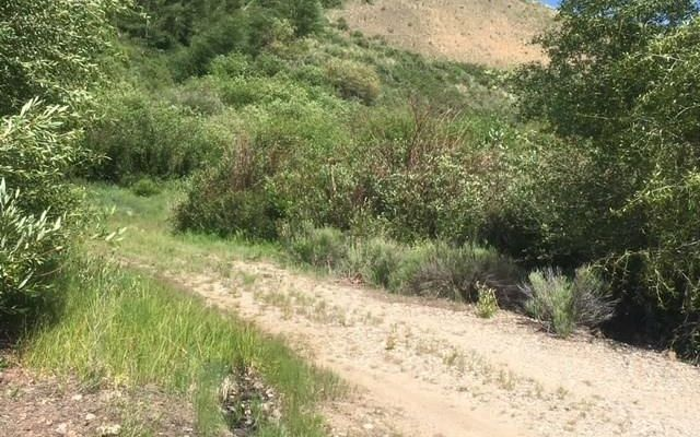 184/224 Hillside Drive - photo 2