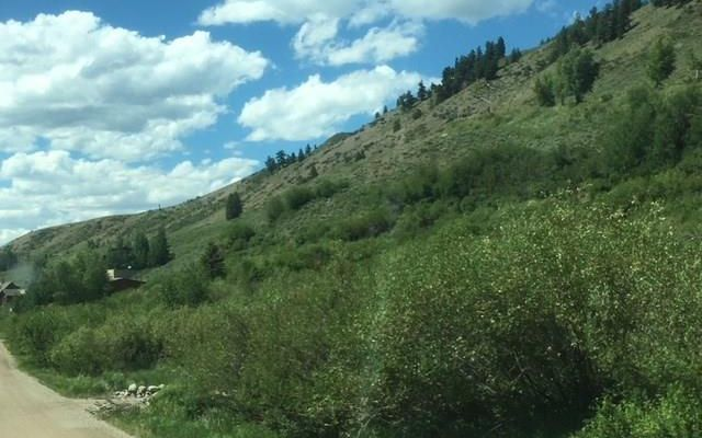 184/224 Hillside Drive - photo 24
