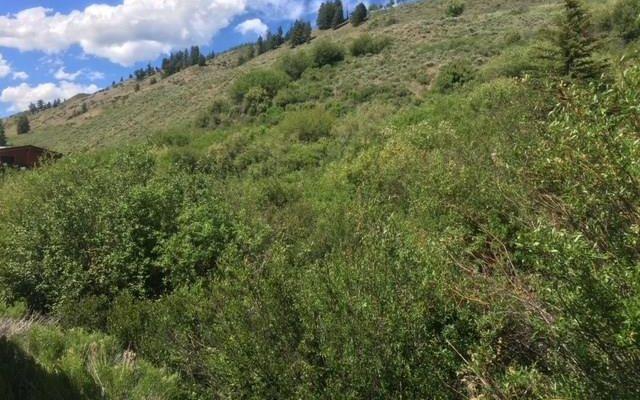 184/224 Hillside Drive - photo 4