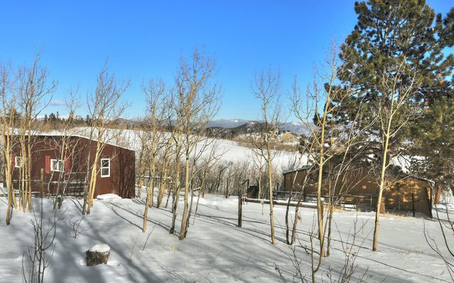 4283 Buffalo Ridge Road - photo 28