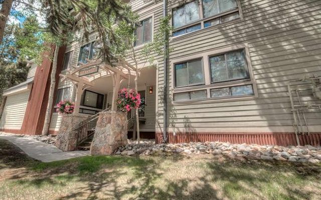 250 Ski Hill Road #25 BRECKENRIDGE, CO 80424