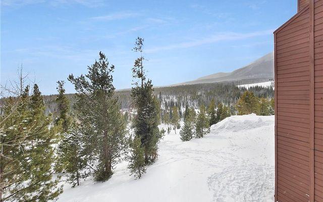 Snowscape Condo 42 - photo 19