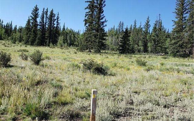 1163 Apache Trail - photo 7