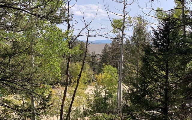 TBD Redhill Rd/Middle Fork Vista FAIRPLAY, CO 80440