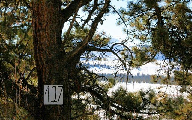 1527 Bonell Drive - photo 7