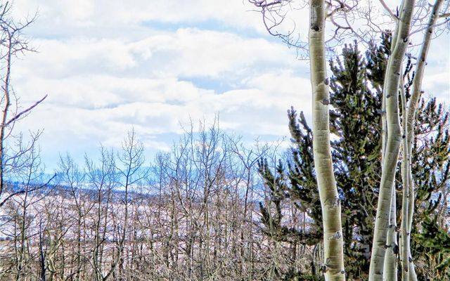 893 Lumberjack Road - photo 10