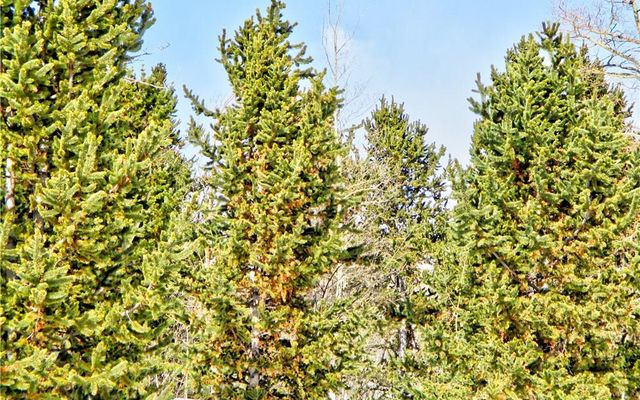 893 Lumberjack Road - photo 15