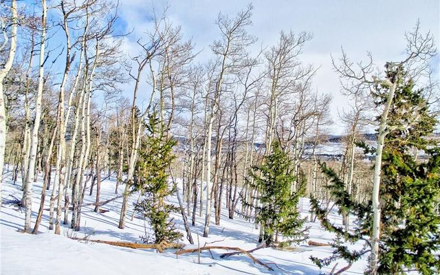 893 Lumberjack Road - photo 6