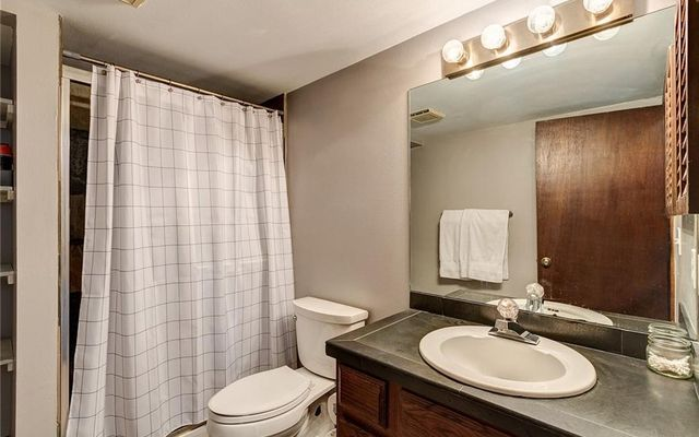 South Face Townhomes 6 - photo 8