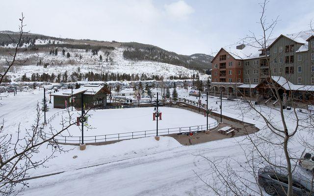 Buffalo Lodge And The Dakota Condos 8497 - photo 21