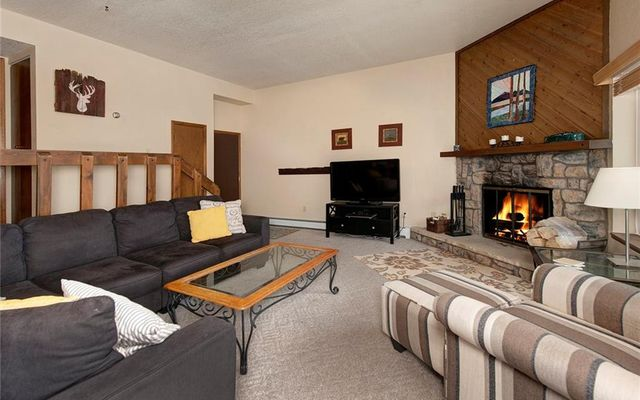 Buffalo Ridge Condo 101 - photo 2