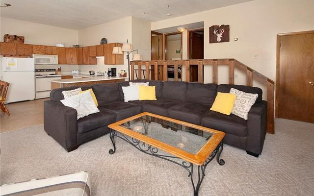 Buffalo Ridge Condo 101 - photo 5