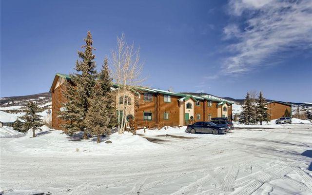 Timber Lodge At Lake Dillon I - photo 28