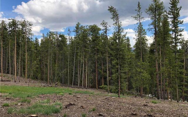15 Elk Trail - photo 15