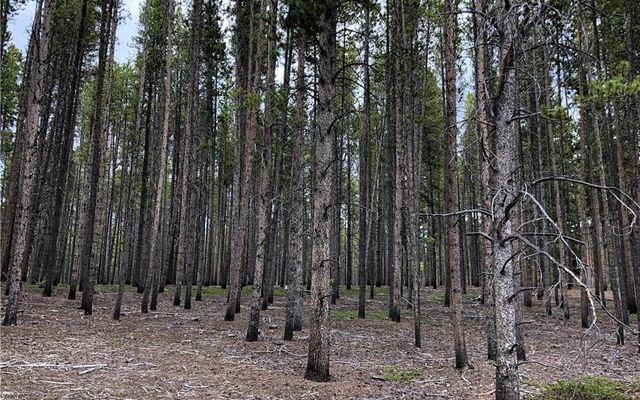 15 Elk Trail - photo 2