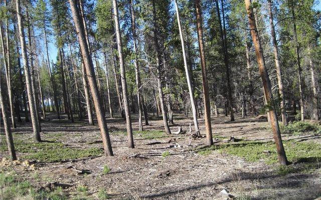 15 Elk Trail - photo 7